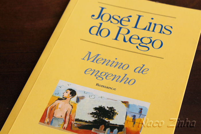 Blog de euzebiodiasbicalho : Blog dos estudantes das Escolas Estaduais de Minas Gerais, MENINO DE ENGENHO, OBRA 6� ANO