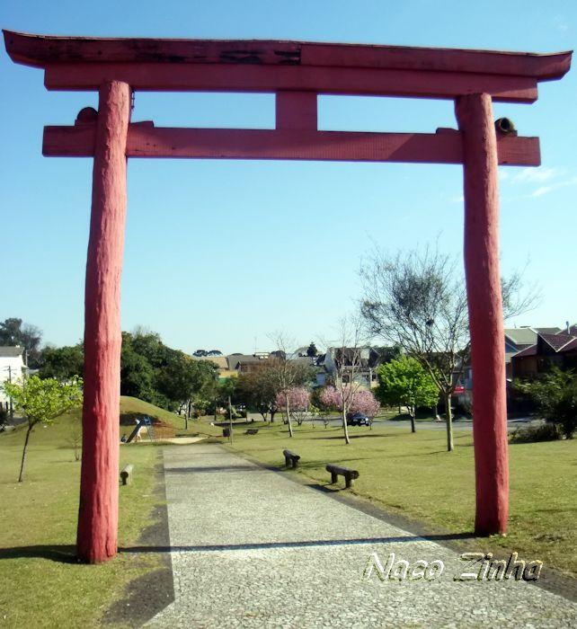 Arco japonês - cerejeira