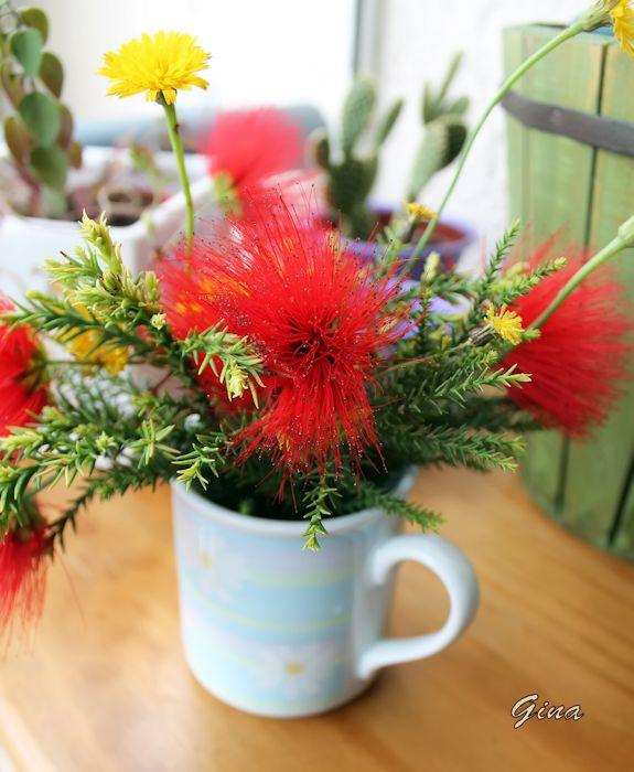 Caneca com flores
