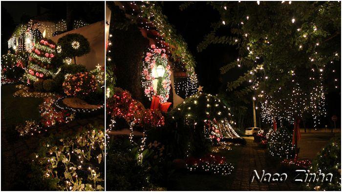 Decoracão natalina e paisagismo