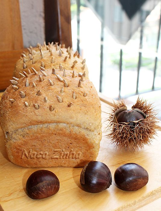 Pão-ouriço de castanha portuguesa