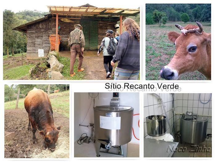 Sítio Recanto Verde - Bocaiuva Sul