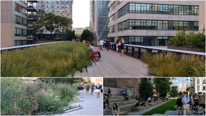 High Line - jardins
