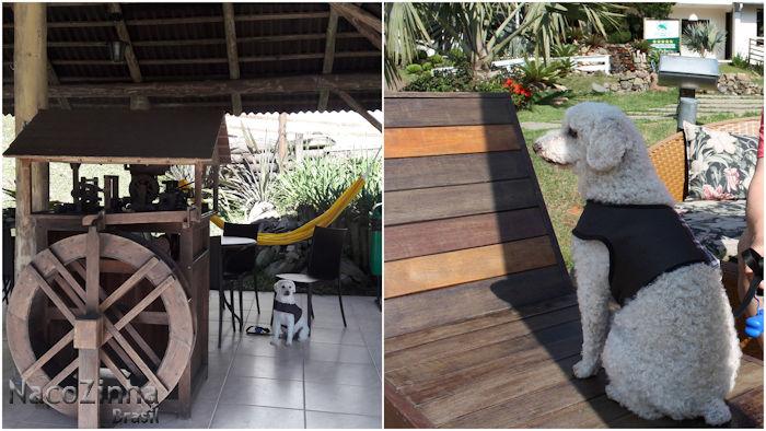 Hotel Fazenda Dona Francisca - hospedagem com cachorro